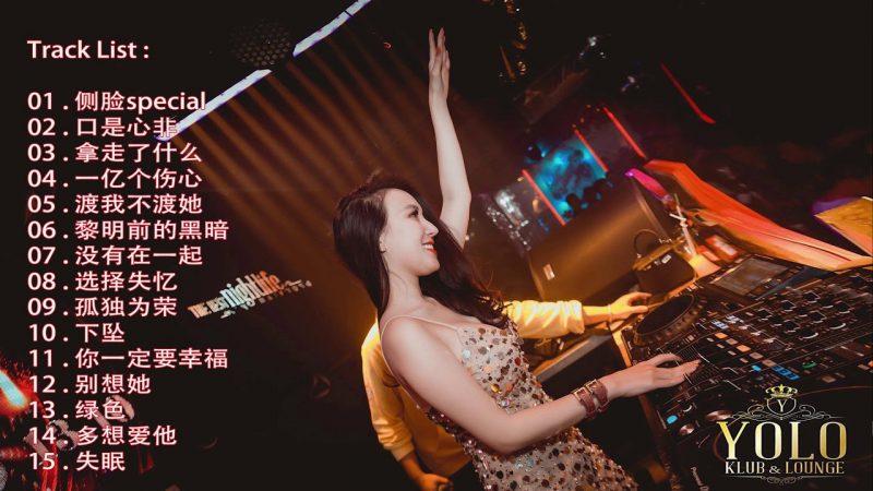 Chinese Dj 2019【泰華串燒】20首精選歌曲 超好聽 – 口是心非- 拿走了什么 – 一亿个伤心 – 文EDM Nonstop