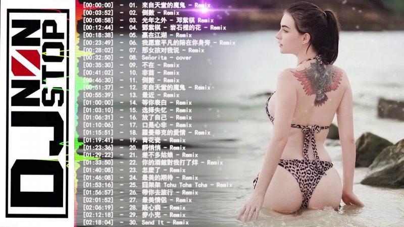 Chinese Dj 2019 || 華語單曲排行月榜 2019快手上最火的歌曲 | 倒數 TIK TOK/岩石裡的花/愛如意/再見/光年之外/漂向北方/ 來自天堂的魔鬼 / 雨蝶…