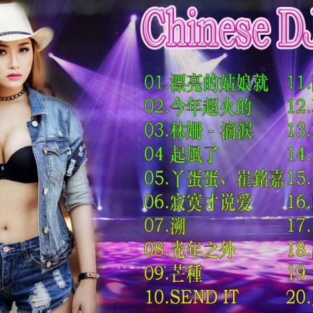 Chinese Dj Remix – 20 年最劲爆的DJ歌曲【我愿意平凡的陪在你身旁 ✘爱的供养 ✘綠色 ✘一曲相思】DJ MoonBaby