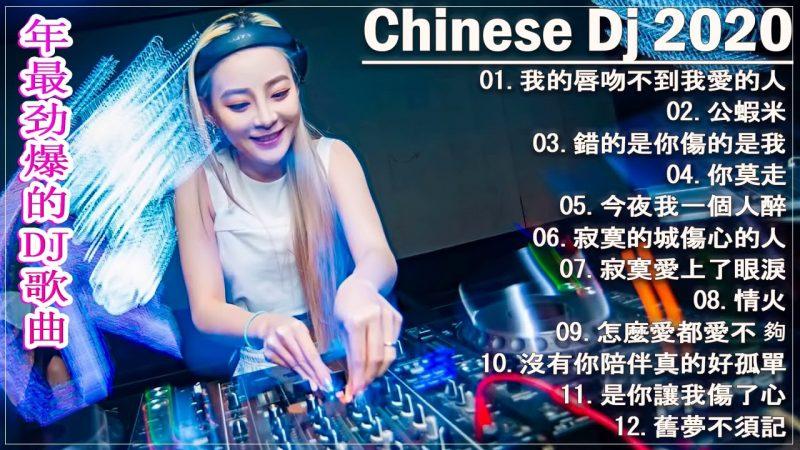 Chinese DJ 2021 高清新2021夜店混音【2021 好聽歌曲合輯】Chinese DJ Remix 【我的唇吻不到我愛的人, 你莫走, 怎麼愛都愛不夠, 情火, 錯的是你傷的是我】